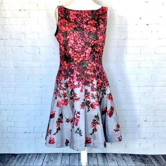 Dresses & Skirts - Danny and Nicole Floral Dress SZ 16